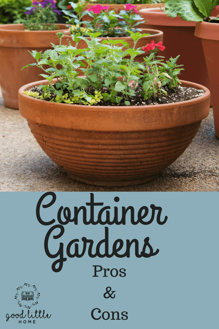 Container Gardens Pros and Cons