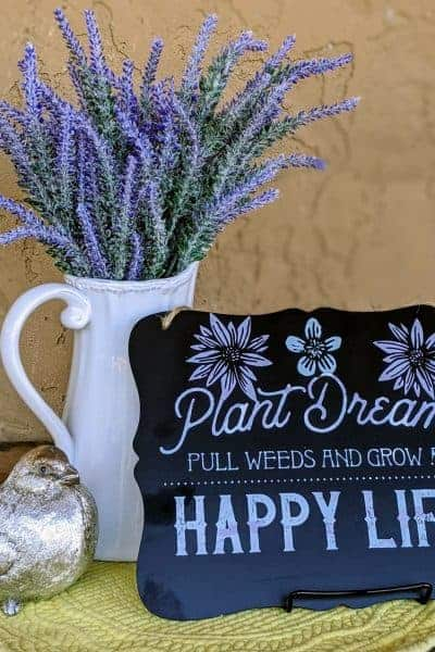 Plant Dreams done 1